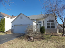 Photo of 299 E Daisy Circle, ROMEOVILLE, IL 60446 (MLS # 09792252)