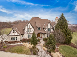 Photo of 36W182 River View Court, ST. CHARLES, IL 60175 (MLS # 09800151)