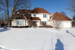Photo of 3968 Paradise Canyon Court, NAPERVILLE, IL 60564 (MLS # 09803482)