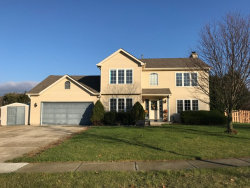 Photo of 974 Donnelly Place, MCHENRY, IL 60050 (MLS # 09808661)