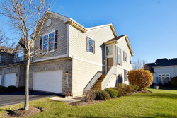 Photo of 1969 Osprey Court, Unit Number 22-3, BARTLETT, IL 60103 (MLS # 09809899)