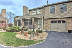 Photo of 9346 Waterford Lane, ORLAND PARK, IL 60462 (MLS # 09810617)