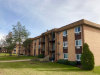 Photo of 745 Heritage Drive, Unit Number 10108, HOFFMAN ESTATES, IL 60169 (MLS # 09811449)