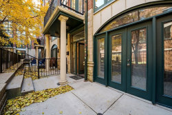 Photo of 26 E 14th Place, Unit Number 5W, CHICAGO, IL 60605 (MLS # 09812284)