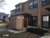 Photo of 181 Shadowbend Drive, Unit Number 181, WHEELING, IL 60090 (MLS # 09814734)
