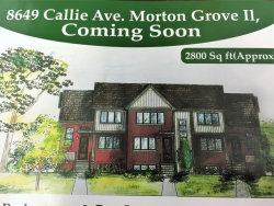 Photo of 8649 Callie Avenue, Unit Number A, MORTON GROVE, IL 60053 (MLS # 09814947)