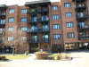 Photo of 9382 Landings Lane, Unit Number 205, DES PLAINES, IL 60016 (MLS # 09815076)