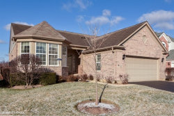 Photo of 9342 Dunmore Drive, ORLAND PARK, IL 60462 (MLS # 09816820)