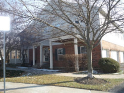 Photo of 64 N Mill Road, Unit Number 64, ADDISON, IL 60101 (MLS # 09818774)