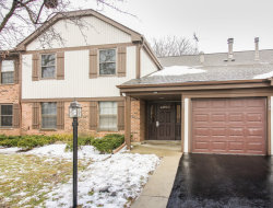 Photo of 226 Brookston Drive, Unit Number D-1, SCHAUMBURG, IL 60193 (MLS # 09831382)
