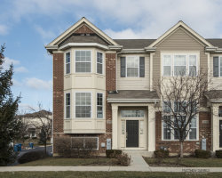 Photo of 1780 Persimmon Street, HANOVER PARK, IL 60133 (MLS # 09834336)