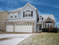 Photo of 4305 Blackthorn Drive, PLAINFIELD, IL 60586 (MLS # 09836167)
