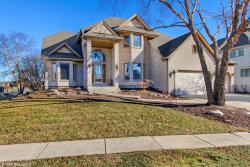 Photo of 13221 Lakepoint Drive, PLAINFIELD, IL 60585 (MLS # 09836682)