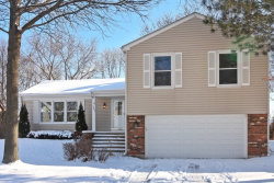Photo of 1243 Brandywyn Lane, BUFFALO GROVE, IL 60089 (MLS # 09836697)