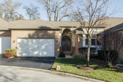 Photo of 761 N Virn Allen Court, PALATINE, IL 60067 (MLS # 09836893)