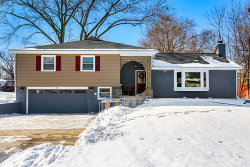 Photo of 14 Alton Road, PROSPECT HEIGHTS, IL 60070 (MLS # 09840807)