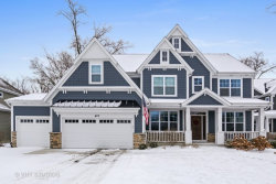 Photo of 407 Atwood Court, DOWNERS GROVE, IL 60516 (MLS # 09845651)
