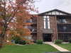 Photo of 7931 Paxton Avenue, Unit Number 3B, TINLEY PARK, IL 60477 (MLS # 09850693)