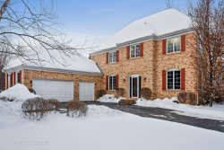 Photo of 1395 Burnside Court, LONG GROVE, IL 60047 (MLS # 09852248)