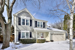 Photo of 170 Rosewood Drive, ROSELLE, IL 60172 (MLS # 09852549)