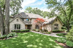 Photo of 316 Royce Woods Court, NAPERVILLE, IL 60565 (MLS # 09858194)