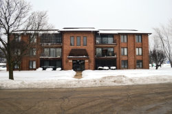 Photo of 9949 Treetop Drive, Unit Number 3305, ORLAND PARK, IL 60462 (MLS # 09858493)