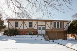 Photo of 304 Nelson Court, BOLINGBROOK, IL 60440 (MLS # 09859214)