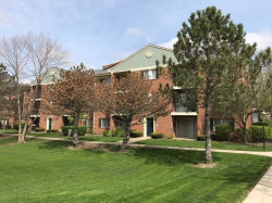 Photo of 1534 N River West Court, Unit Number 3B, MOUNT PROSPECT, IL 60056 (MLS # 09859777)