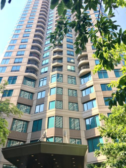 Photo of 400 N Lasalle Street, Unit Number 2911, CHICAGO, IL 60654 (MLS # 09860366)