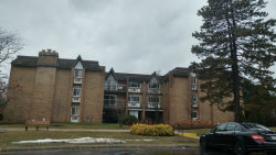 Photo of 340 Claymoor Street, Unit Number 1A, HINSDALE, IL 60521 (MLS # 09861792)