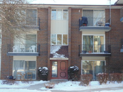 Photo of 5S070 Pebblewood Lane, Unit Number G11, NAPERVILLE, IL 60563 (MLS # 09862113)