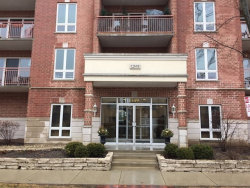 Photo of 1349 E Washington Street, Unit Number 208, DES PLAINES, IL 60016 (MLS # 09862256)