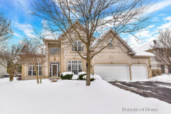 Photo of 4639 Chokeberry Drive, NAPERVILLE, IL 60564 (MLS # 09862694)