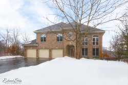 Photo of 1550 Dale Drive, ELGIN, IL 60120 (MLS # 09862696)