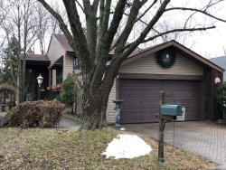 Photo of 6369 Kindling Court, LISLE, IL 60532 (MLS # 09864317)