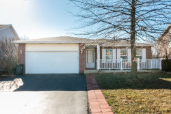 Photo of 203 Steamboat Lane, BOLINGBROOK, IL 60440 (MLS # 09873650)