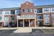 Photo of 12950 Meadow View Court, Unit Number 207, HUNTLEY, IL 60142 (MLS # 09874280)