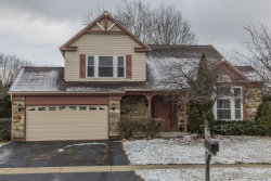 Photo of 388 Wildberry Lane, BARTLETT, IL 60103 (MLS # 09879908)