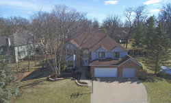 Photo of 913 Doral Drive, BARTLETT, IL 60103 (MLS # 09880362)