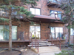 Photo of 6505 N Nashville Avenue, Unit Number 403, CHICAGO, IL 60631 (MLS # 09884311)