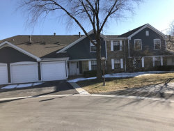 Photo of 292 Middlebury Court, Unit Number D1, SCHAUMBURG, IL 60193 (MLS # 09884700)