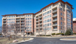 Photo of 45 Prairie Park Drive, Unit Number 310, WHEELING, IL 60090 (MLS # 09890529)