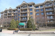 Photo of 15 S Pine Street, Unit Number 408A, MOUNT PROSPECT, IL 60056 (MLS # 09892882)