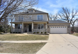 Photo of 205 S Winthrop Drive, ROUND LAKE, IL 60073 (MLS # 09895753)