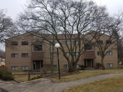 Photo of 58 Vail Colony Street, Unit Number 12, FOX LAKE, IL 60020 (MLS # 09897708)