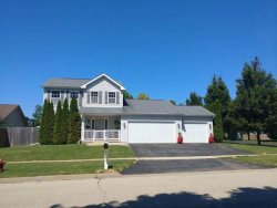 Photo of 1325 Caswell Street, BELVIDERE, IL 61008 (MLS # 09899962)