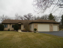 Photo of 3511 Chelmsford Drive, SPRING GROVE, IL 60081 (MLS # 09905915)