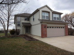 Photo of 289 Beaumont Court, BARTLETT, IL 60103 (MLS # 09908244)