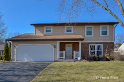 Photo of 853 Pleasant Street, WOODSTOCK, IL 60098 (MLS # 09909500)