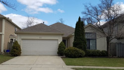 Photo of 105 Otsego Court, BLOOMINGDALE, IL 60108 (MLS # 09911491)